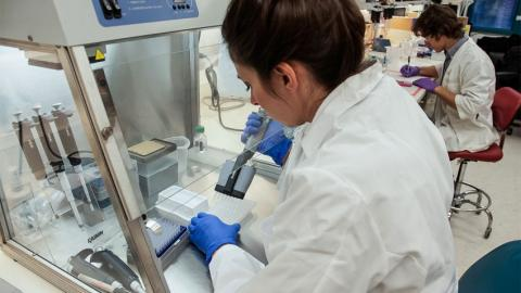 Picture of scientist pipetting